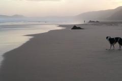 beach-with-rosie
