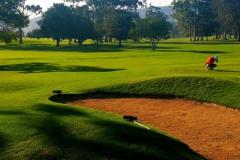 knysna-golf-course