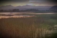 sedegfield-lakes