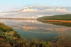 sedgefield-lake-area