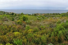 view-from-ocean-view-lodge-over-to-buffels