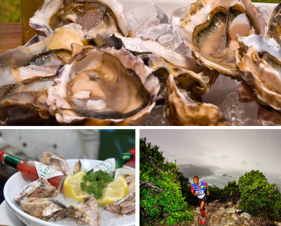 knysna-oyster-festival-ocean-view-lodge